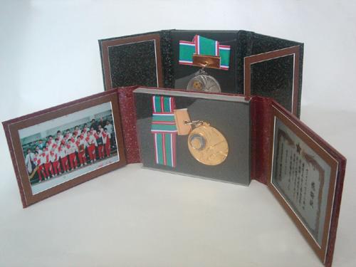3面メタル式|アイデア商品 通販 メダルケース